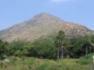 Święta góra Arunaćala, na zboczu której rozsypane zostały prochy Jerzego Grotowskiego. Fot. Izabela Młynarz